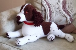 Gretel the springer spaniel